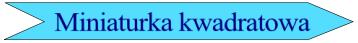 zrób zdjęcie formacie kwadratowym na fb, nk, lub portfela